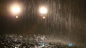 stock-footage-heavy-rain-in-ecuadorian-tropical-forest-by-night-shot-against-car-headlights